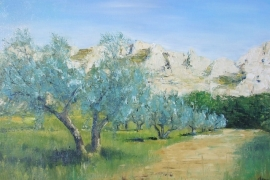 Les oliviers - Provence