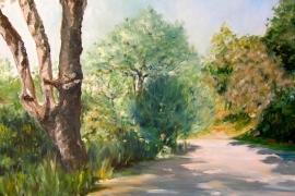 Sentier en Provence